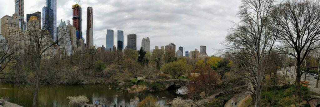 Central Park and NYC skyline