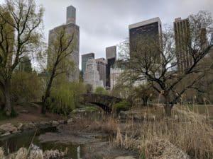 NYC skyline and stone bridge
