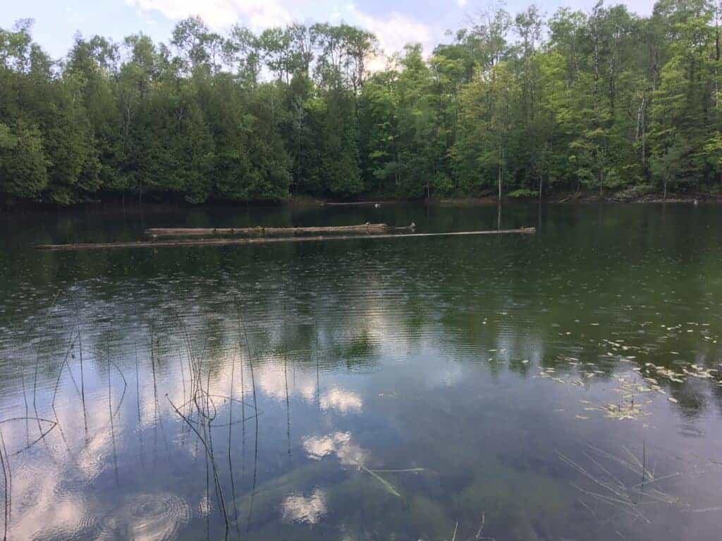 Sinkhole at Rockport State Recreation Area