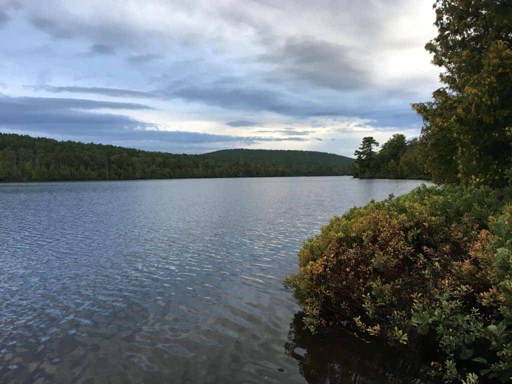 View of a lake surrounded by trees at Fort Wilkins State Park