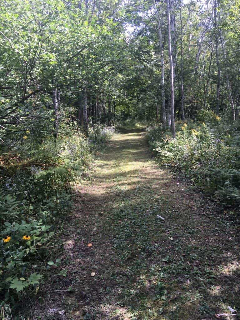 Trail through Lime Island