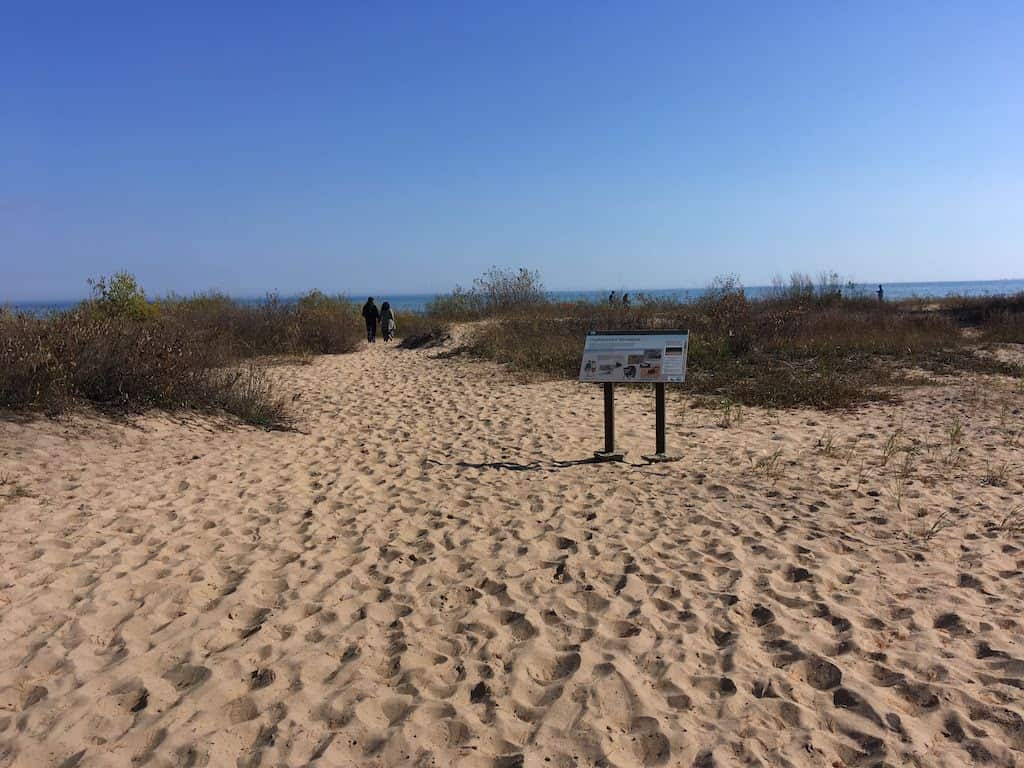 Negwegon State Park Beach