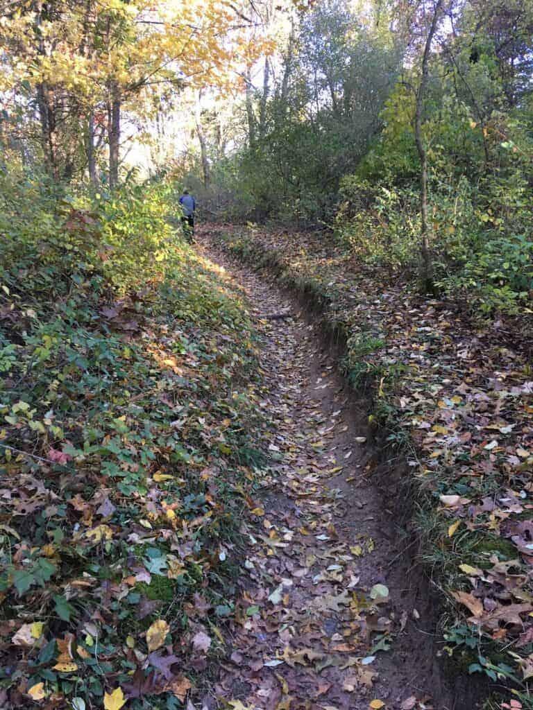 Mountain Bike trail at Pinckney State Recreation Area